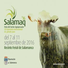 Salamaq 2016